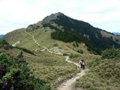嘉明湖國家步道記行(中) 三叉山~嘉明湖:PICT0023a.jpg