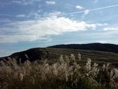 石梯嶺頂山步道 ~隨意行:PICT0023a.jpg