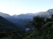 司馬庫斯山林漫步:IMG_4354a.jpg