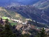 這一季的高山農場~武陵+福壽山:PICT0170a.jpg