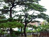 松園別館蘇花公路拾零:PICT0006a.jpg