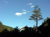 這一季的高山農場~武陵+福壽山:PICT0051a.jpg