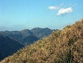 草山- 芒浪, 秋色欲燃:PICT0222aa.jpg