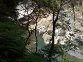 內洞森林遊樂區快樂遊~:PICT0004a.jpg