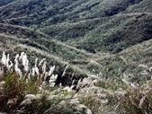 石梯嶺頂山步道 ~隨意行:PICT0024a.jpg