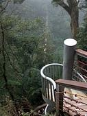 竹山天梯~太極峽谷探險:PICT0008v.jpg