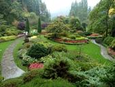 百分百玩加4-B:維多利亞--布查花園(Butchart Garden ):P1010214a.jpg