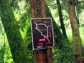 「 水漾森林」~尋幽探祕:PICT0037a.jpg