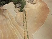 -來去野柳地質公園看看-:PICT0024a.jpg