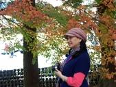 這一季的高山農場~武陵+福壽山:PICT0132a.jpg