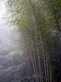 竹山天梯~太極峽谷探險:P1250792p.jpg