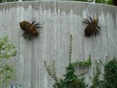 百分百玩加4-B:維多利亞--布查花園(Butchart Garden ):P1010241a.jpg