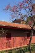 2015 春節~走訪集集小鎮:IMG_8242a.jpg