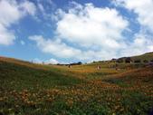 2013六十石山金針花季:PICT0064a.jpg