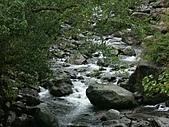 滿月圓森林雨中漫步:PICT0098a.jpg