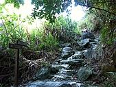 合歡越嶺天險-錐麓古道:PICT0020m.jpg