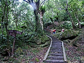 滿月圓森林雨中漫步:PICT0006a.jpg