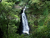 滿月圓森林雨中漫步:PICT0007a.jpg