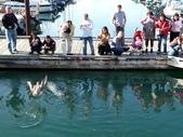 百分百玩加3-B:維多利亞之比根丘公園~橡樹灣~黃金溪:P1010119a.jpg