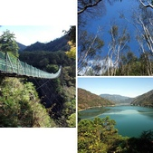 春訪奧萬大森林遊樂區:相簿封面