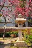 2015 春節~走訪集集小鎮:IMG_8239a.jpg