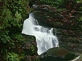滿月圓森林雨中漫步:PICT0025a.jpg
