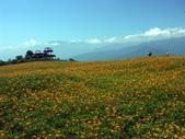 2013六十石山金針花季:PICT0074a.jpg