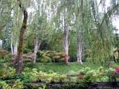 百分百玩加4-B:維多利亞--布查花園(Butchart Garden ):P1010224a.jpg