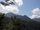 司馬庫斯山林漫步:IMG_4454a.jpg