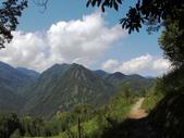 司馬庫斯山林漫步:IMG_4467a.jpg