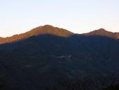 司馬庫斯山林漫步:IMG_4344a.jpg