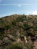 石梯嶺頂山步道 ~隨意行:PICT0034a.jpg