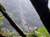 竹山天梯~太極峽谷探險:P1250797v.jpg