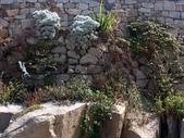 馬祖卡蹓-1: 北竿巡禮~(塘岐、后澳、橋仔、芹壁、螺山、壁山、阪里):PICT0160a.jpg