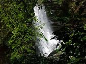 滿月圓森林雨中漫步:PICT0054a.jpg