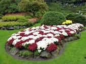 百分百玩加4-B:維多利亞--布查花園(Butchart Garden ):P1010219a.jpg