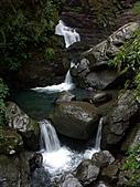 滿月圓森林雨中漫步:PICT0058a.jpg