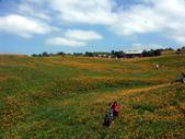 2013六十石山金針花季:PICT0052a.jpg