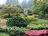 百分百玩加4-B:維多利亞--布查花園(Butchart Garden ):P1010216a.jpg