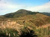 石梯嶺頂山步道 ~隨意行:PICT0035a.jpg