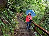 滿月圓森林雨中漫步:PICT0059a.jpg