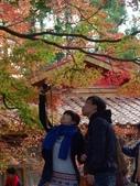 這一季的高山農場~武陵+福壽山:PICT0138z.jpg