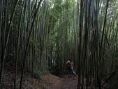 司馬庫斯之森林溪瀑:IMG_4358a.jpg