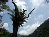 內洞森林遊樂區快樂遊~:PICT0011a.jpg