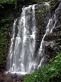 滿月圓森林雨中漫步:PICT0063a.jpg