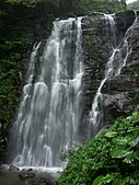 滿月圓森林雨中漫步:PICT0067a.jpg