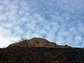 草山- 芒浪, 秋色欲燃:PICT0164a.jpg
