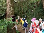 「 水漾森林」~尋幽探祕:PICT0068a.jpg