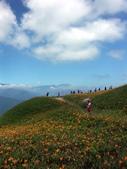 2013六十石山金針花季:PICT0066a.jpg