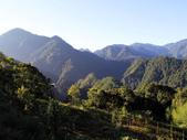 司馬庫斯山林漫步:IMG_4372a.jpg